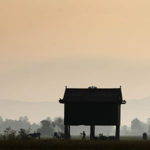 EXPOSITION KEAT TUNIER «Le Cambodge de mon enfance» (6 > 22/02)