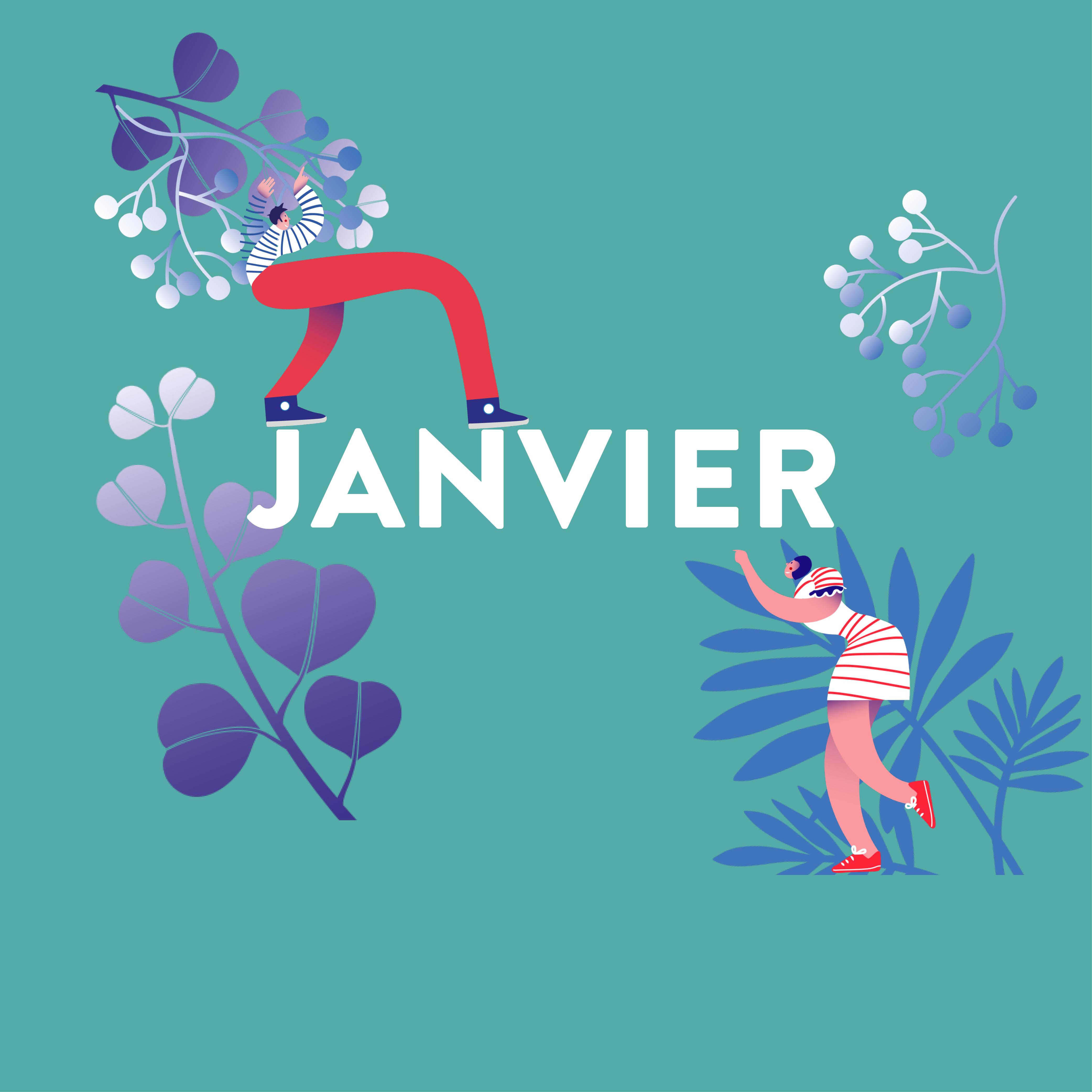 janvier – vignette